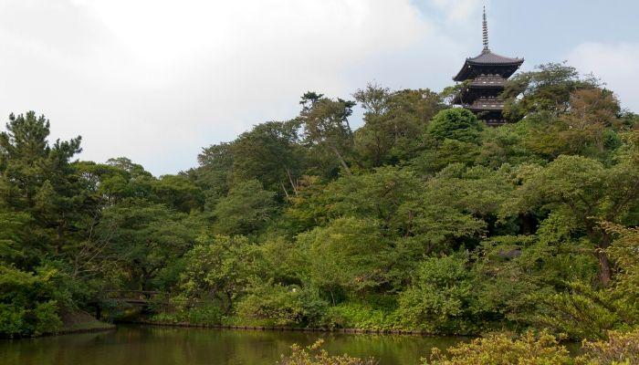 Sankeien Garden, Yokohama, Japan