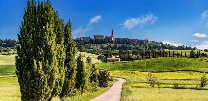 Go Wine Tasting in Tuscany