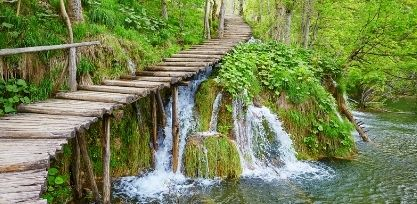 Get Lost in Plitvice Lakes National Park