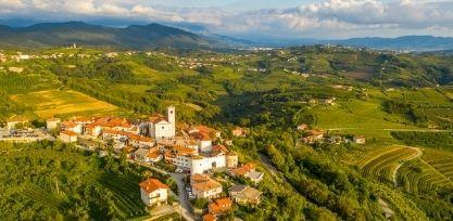 Go Wine Tasting in Goriska Brda