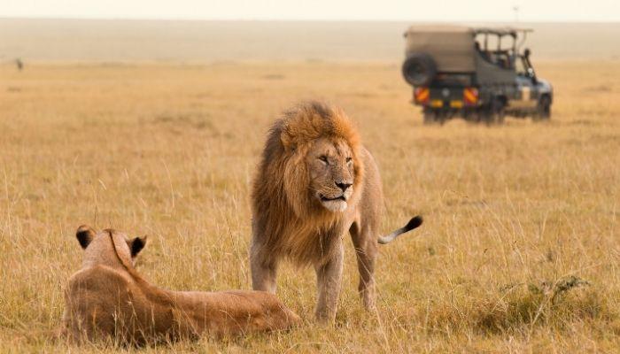 Best time to visit Kenya