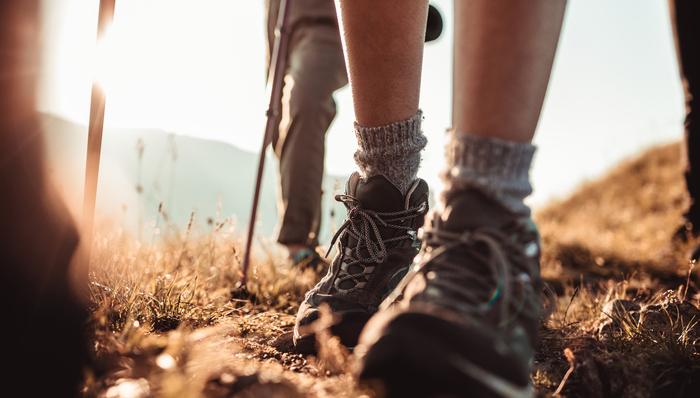 Walking boots for safari