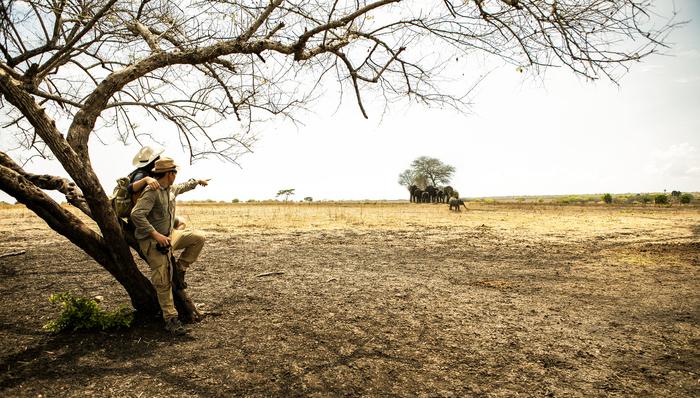 Walking safari in Africa