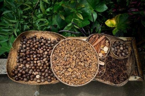 Coffee Plantation, Bali