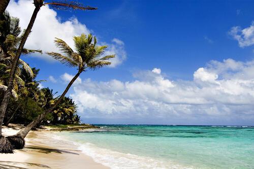 Diani Beach AfroChic