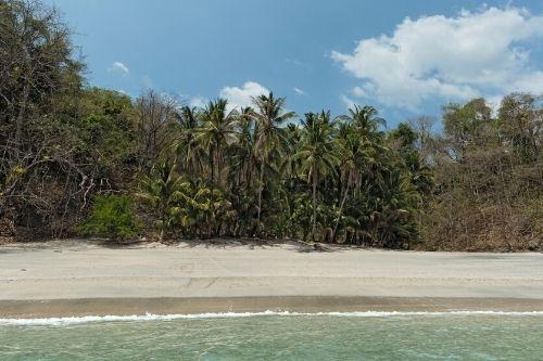 Cebaco Island Panama