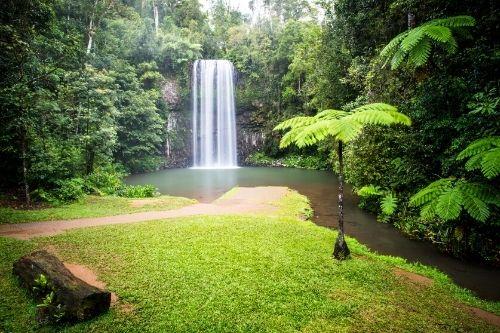 Millaa Millaa Waterfall, Atherton Tablelands