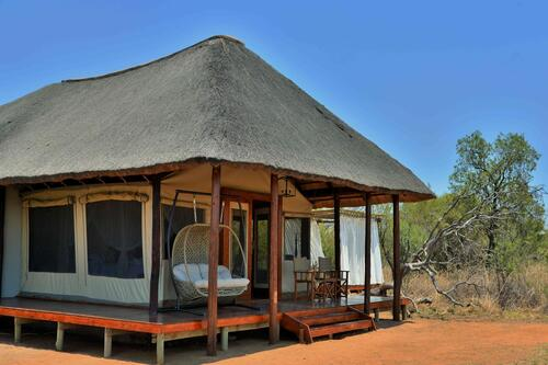 Safari Plains Room