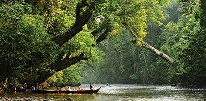 Lata Berkoh (National Park)