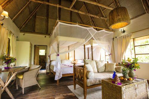 Bwindi Lodge Luxury Guest Banda
