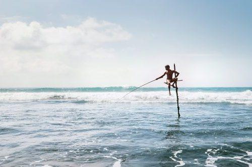 Stick Fisherman, Sri Lanka