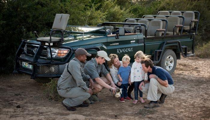 Kwandwe Safari