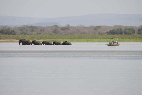 Siwandu, Selous Game Reserve