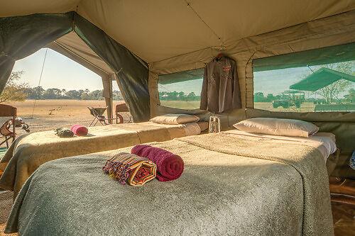 Letaka Safaris Tent