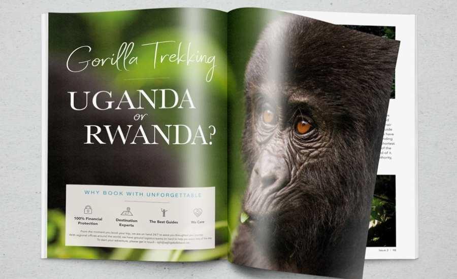 Gorilla page magazine