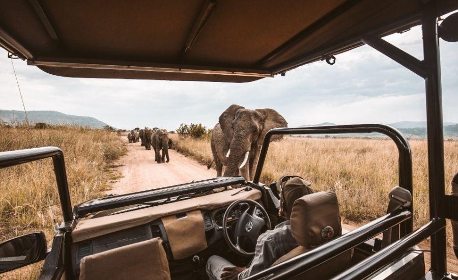 Safari Truck South Africa