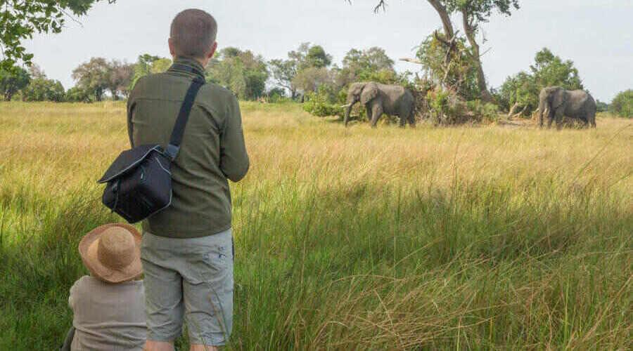Walking - camp okavango