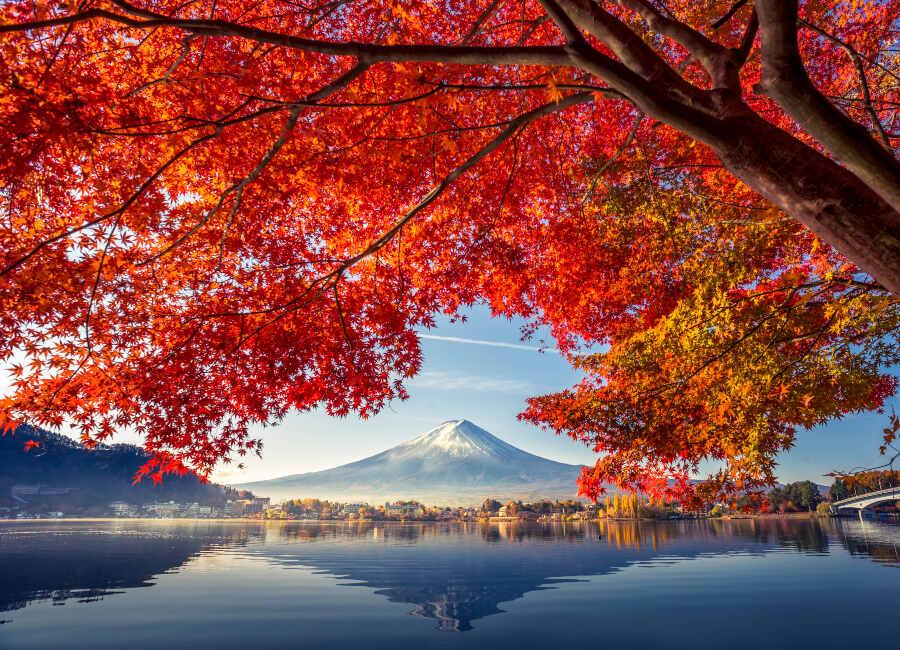 Fuji in Autumn, Japan