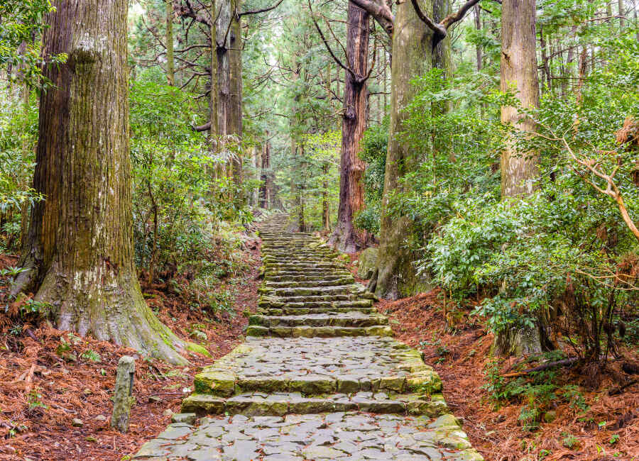 Kumano Kodo walking trail, Japan