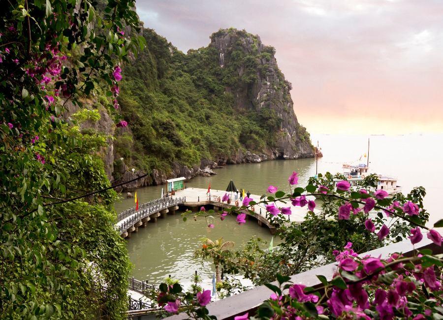 Springtime in Halong Bay, Vietnam