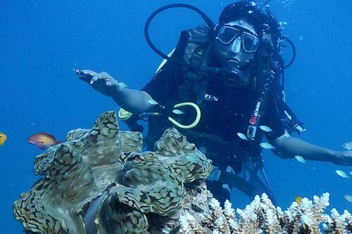 diving - Hemingway Watamu