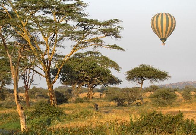 hot air balloon over the Serengeti plains
