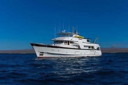 Beluga Yacht View