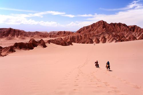 Riding Horse, Vale de la Luna - Atacama Desert, Chile