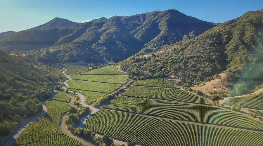 Colchugua Valley Chile