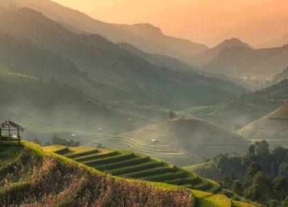 Rice terraces, Yenbai, Northern Vietnam