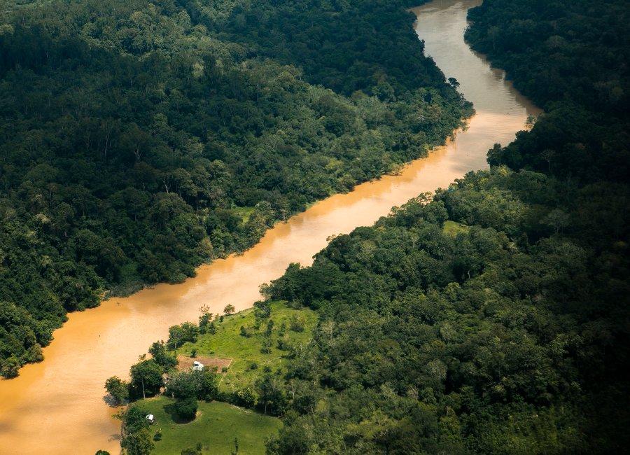 Sekonyer River in Tanjung Puting, Kalimantan