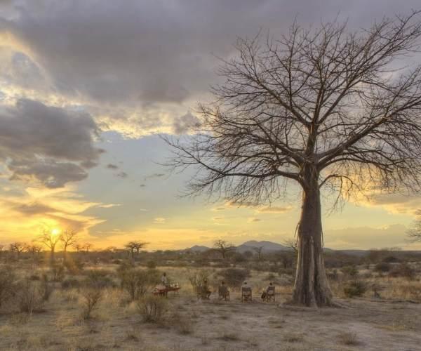 Baobab, jabali ridge