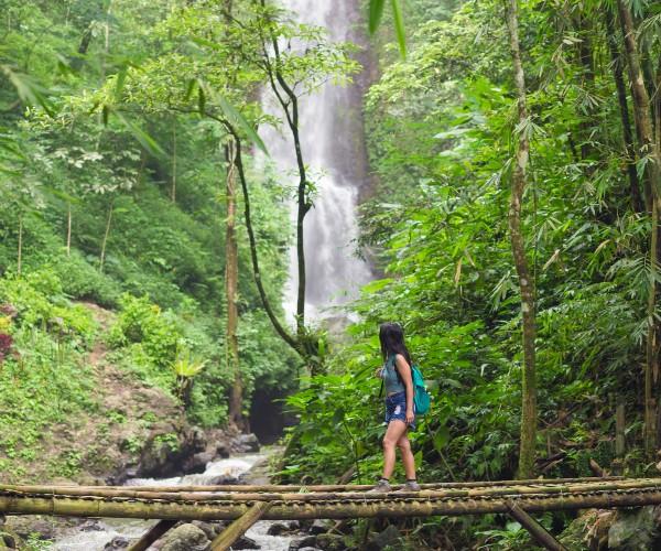Forest walk in Munduk, Bali