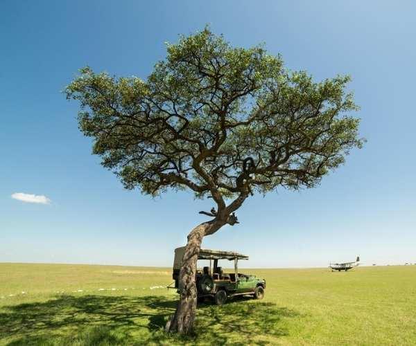 Great Plains Mara Camp