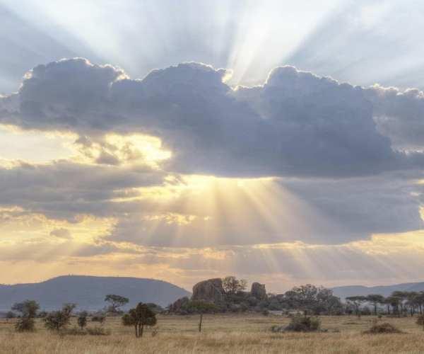 Serengeti, Dunia Camp