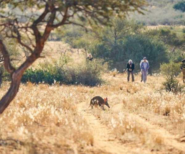 Tswalu Lodge, South Africa