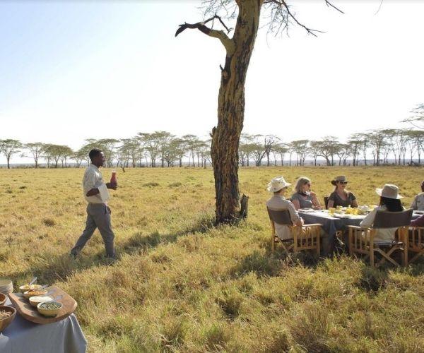 Serengeti, Northern Tanzania